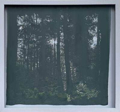 Sian Smith, 'Daybreak', 2020