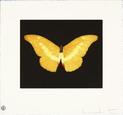 Damien Hirst, 'To Lure', 2007