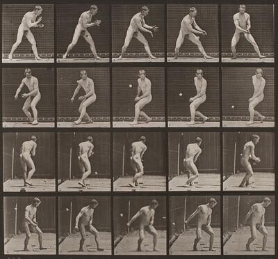 Eadweard Muybridge, 'Plate 288, Animal Locomotion: Baseball, error', 1872-1885 / printed 1887