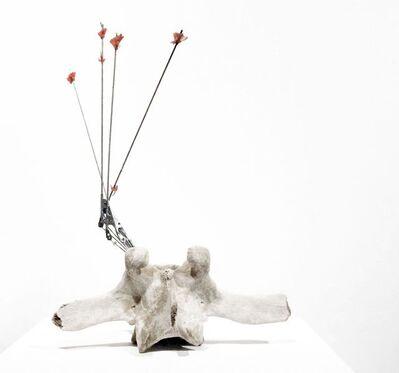 Elisa Lendvay, 'Palo', 2010