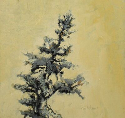 Tom Gale, 'Tree Top on Yellow Back', 2013