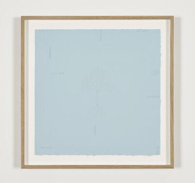 Robert Barry, 'Untitled', 1981