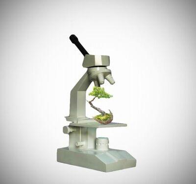 Dara Gallopin, 'Microscope', 2011
