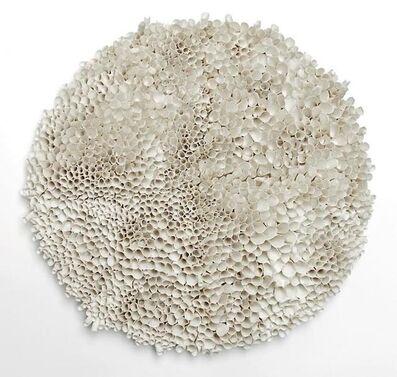 Valeria Nascimento, 'Botanica series', 2016
