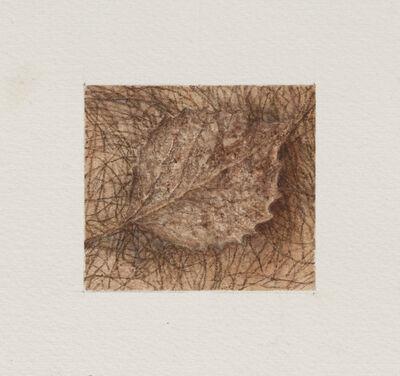 Ellen Altfest, 'Leaf', 2021