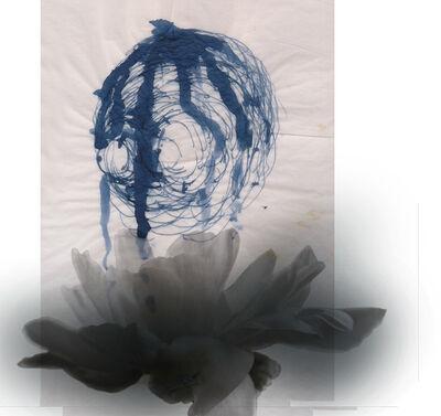 Martin Walde, 'mudheadlily01f', 2014