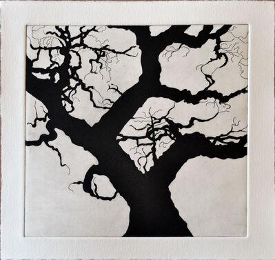 Nate Cassie, 'Tree Series: Olmos III', 2011
