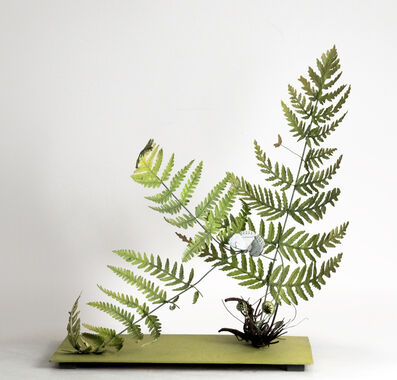 Carmen Almon, 'Fern with Large White Butterfly', 2019