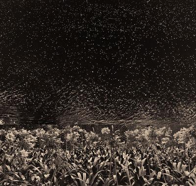 Albarrán Cabrera, 'The Mouth of Krishna. #172', 2016