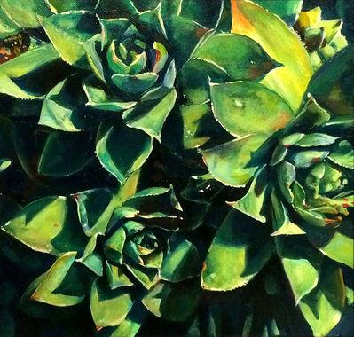 Augustina Droze, 'Succulents', 2015