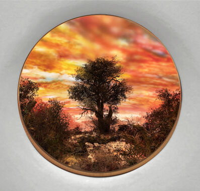 Patrick Jacobs, 'Tree with Red Moonlit Sky (Diorama viewed through 7.5 inch window)', 2020