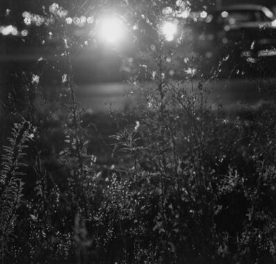 Robert Adams (b.1937), 'Longmont, Colorado', 1980