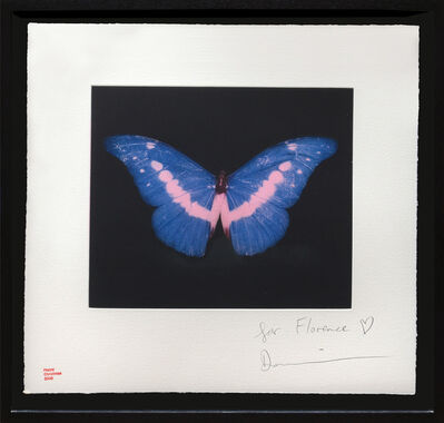 Damien Hirst, 'To Belong - Butterfly', 2008