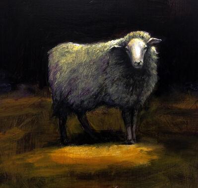 Treacy Ziegler, 'Hebridean Sheep on the Moors', 2017