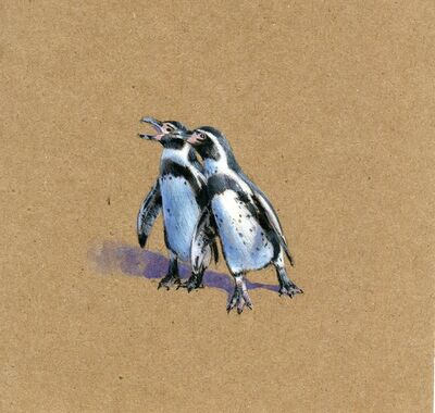Dina Brodsky, 'Squabbling Penguins', 2019