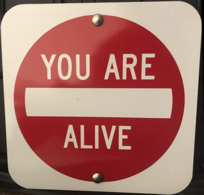 """Scott Froschauer, '""""You Are Alive"""" - Contemporary Street Sign Sculpture', 2019"""