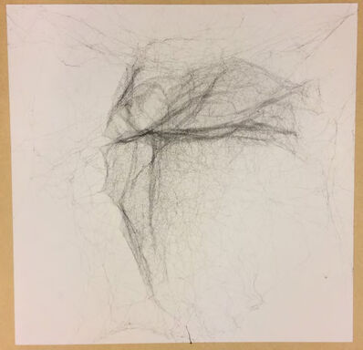 Tomás Saraceno, 'Solitary semi-social semi-social mapping of HIZSS 003 by a solo Nephila senegalensis -one week, a solo Cyrtophora citricola -one week and a solo Cyrtophora citricola - two weeks', 2016