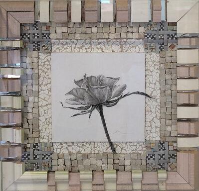 Nall, 'Tuscia's Roses Dinner Plate', 1993-2000