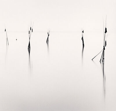 Michael Kenna, 'Bamboo Harbor Guides, Study 2, Hinagu, Kyushu, Japan', 2002