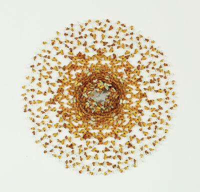 Annalù Boeretto, 'Dreamcathcer : orange sun', 2020
