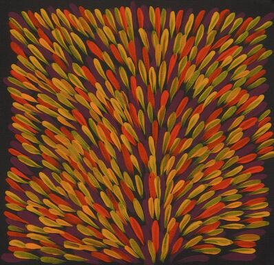 Gloria Petyarre, 'Bush Medicine Leaves', 2014