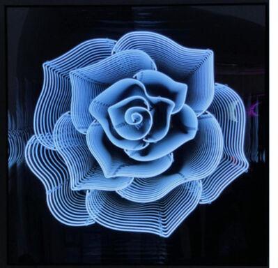Emmanuelle Rybojad, 'Camelia Rose (White)', 2019