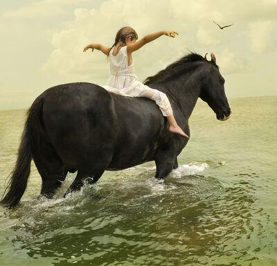 Tom Chambers, 'Marwari Stallion #1', 2009