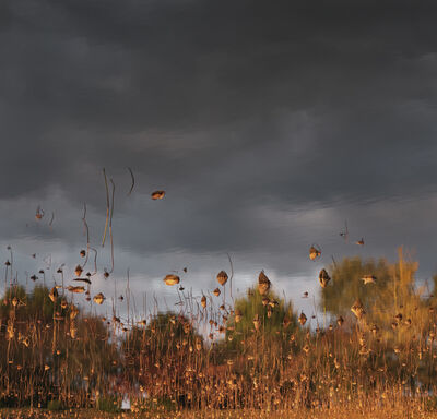 Ori Gersht, 'Floating World - Hanging Sky 01', 2016