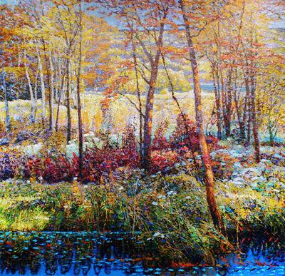 Shi Le, 'Linberlost Fall #1'
