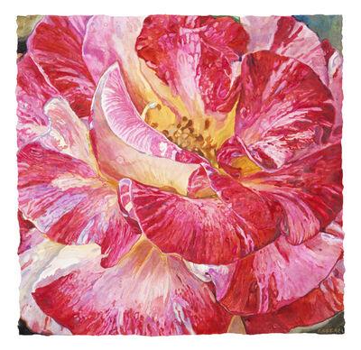 Joseph Raffael, 'Red Rose', 2017