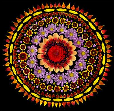 Portia Munson, 'Cosmos Sun', 2011