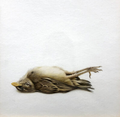 Francisco Souto, 'Very Little Bird (After Chavez)', 2019