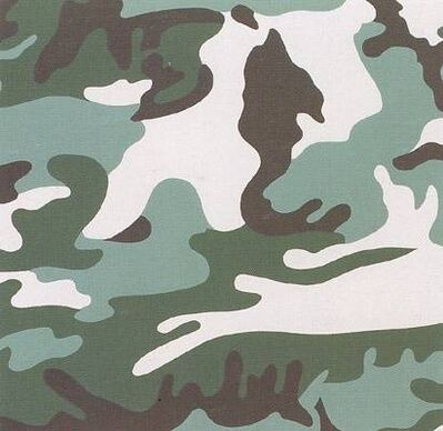 Andy Warhol, 'Camouflage II.406', 1987