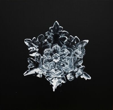 Guo Hongwei 郭鸿蔚, 'The Dark Side – Snowflake No. 3 暗面—雪花3', 2012