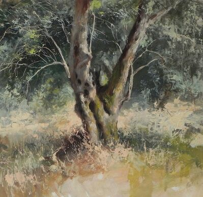 Michael Alford, 'Olive Grove, Kerkyra - woodland landscape painting', 2020