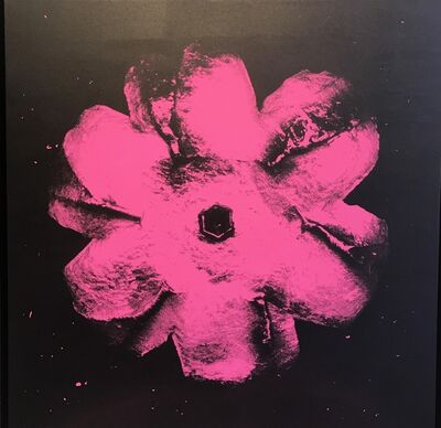 Rubem Robierb, 'Power Flower N-2 (Light pink on black)', 2016