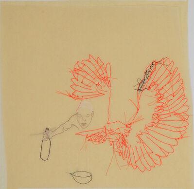 Wura-Natasha Ogunji, 'Untitled (owl)', 2007/2018