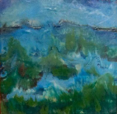 Kitty Caparella, 'Turbulent Wetlands', 2013