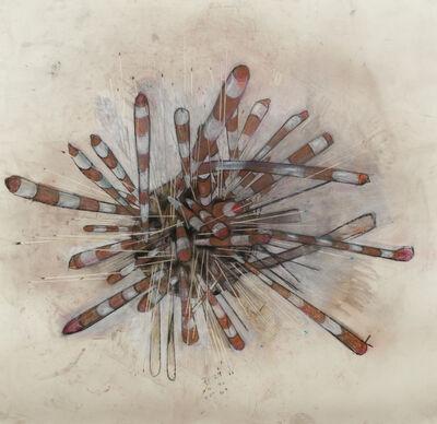 Alana Roth, 'Banded Sea Urchin', 2016