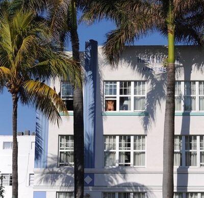 Jean-Philippe Piter, 'Miami Icons (Miami)', 2015