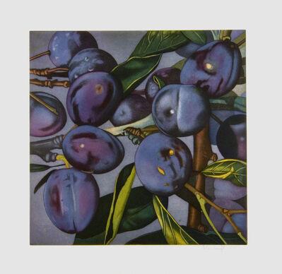 Karin Kneffel, 'Plums', 2005
