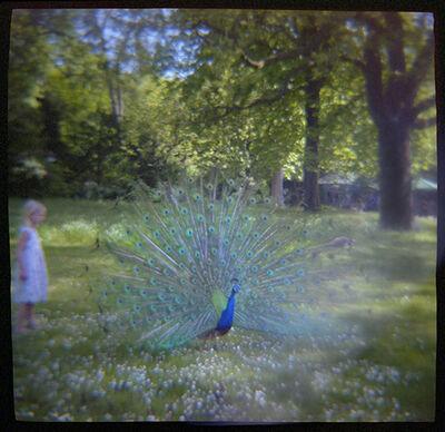 Mary Kocol, 'Girl and Peacock, Parc de Bagatelle, Paris', 2016