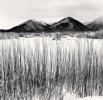 Michael Kenna, 'Frozen Itadori, Hokkaido, Japan', 2020