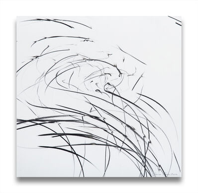 Jaanika Peerna, 'Storm Series (Ref 845)', 2009