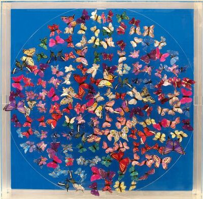 Michael Olsen, 'Butterflies, blue', 2016