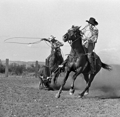 Laura Wilson, 'Cowboys Roping, Y-6 Ranch, Valentine, Texas June 3, 1992'