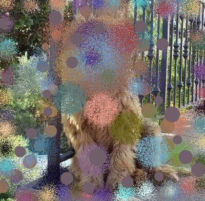 Hilary Lloyd, 'Labrador Poodle III', 2017