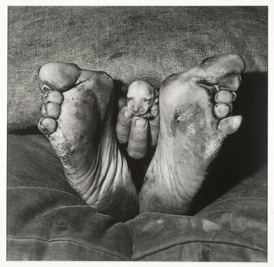 "Roger Ballen, '""PUPPY BETWEEN FEET""', 1999"