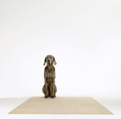 William Wegman, 'Golden Mean', 2005