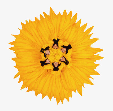 Howard Schatz, 'Fashion Flowers:  Sunflower', 2006